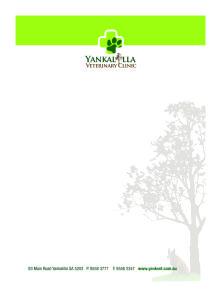Yank Vets letterheads